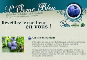 Bleuetière L'Orme Bleu - Chaudière-Appalaches, Saint-Isidore (Beauce)