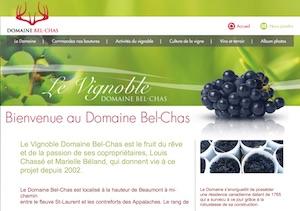 Vignoble Domaine Bel-Chas - Chaudière-Appalaches, Saint-Charles (Bellechasse)