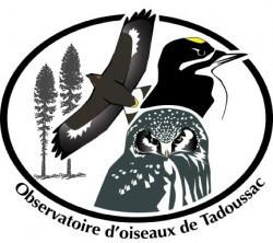 Le Festival des oiseaux migrateurs de la Côte-Nord - Côte-Nord / Manicouagan, Les Bergeronnes