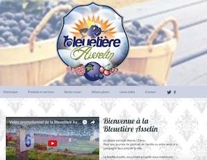 Bleuetière Asselin - Lanaudière, Lanoraie