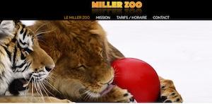 Miller Zoo - Chaudière-Appalaches, Frampton (Beauce)