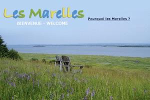 Les marelles - Bas-Saint-Laurent, L'Île-Verte