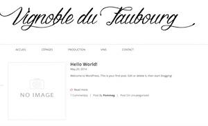 Vignoble du Faubourg - Chaudière-Appalaches, Saint-Jean-Port-Joli (Côte-du-Sud)