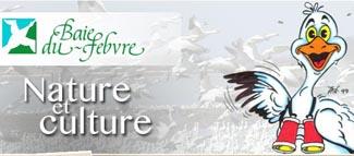 Regard sur l'Oie Blanche - -Centre-du-Québec-, Baie-du-Febvre
