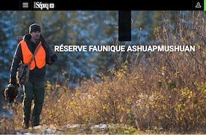 Réserve faunique Ashuapmushuan - Saguenay-Lac-Saint-Jean, La Doré (Lac-St-Jean)