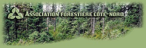 Association forestière Côte-Nord - Côte-Nord / Manicouagan, Baie-Comeau