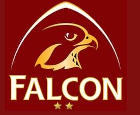 Motel Falcon - Montérégie, Brossard
