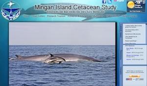 Station de Recherche des Îles Mingan / Mingan Island Cetacean Study - Côte-Nord / Duplessis, Longue-Pointe-de-Mingan