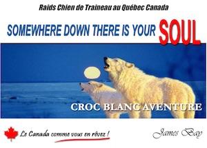 Croc Blanc Aventure - Mauricie, La Tuque (Clova)