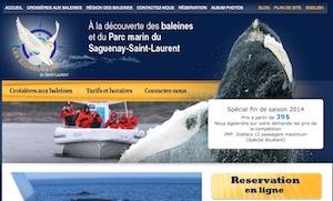 Les Écumeurs du Saint-Laurent (Croisière) - Côte-Nord / Manicouagan, Les Escoumins