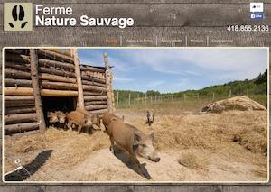 Ferme Nature Sauvage - Bas-Saint-Laurent, Saint-Michel-de-Squatec